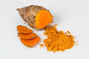 kurkuma longa wortel